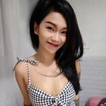 Hon Smooci model