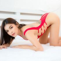 Phi Bangkok Escort