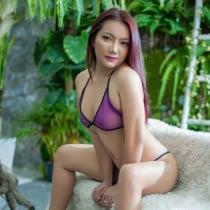 Ying Smooci model